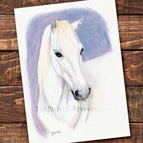 Custom Colored Pencil Head Study Equestrian Artwork