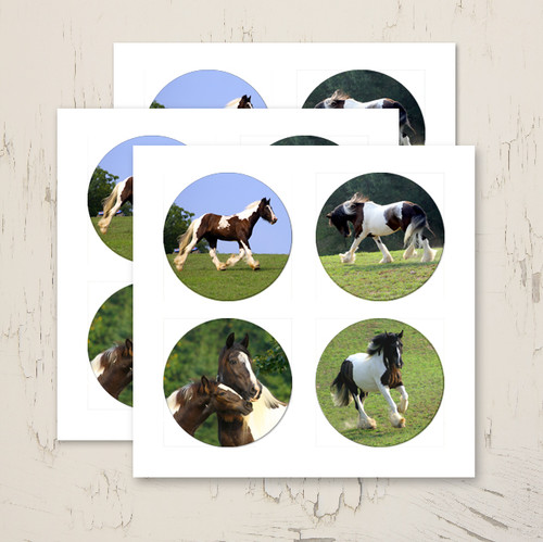 Gypsy Vanner Horse Round Stickers Pack