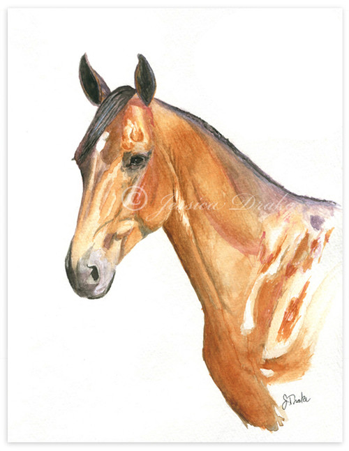 Custom Watercolor Horse or Pet Portrait