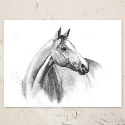 horse head artwork blank equestrian note cards