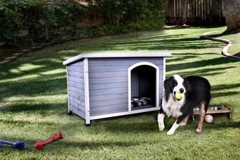 Cleo Gray/White Small Dog House
