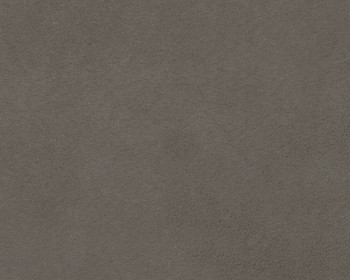 Edeline Gray Plush Sofa