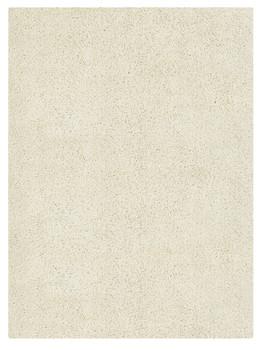 Mekhi White 5' x 7' Shag Rug