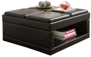 Brianna Coffee Table/Ottoman With Flip Trays On Casters