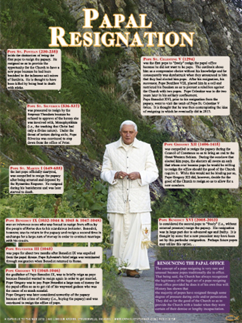 Papal Resignation Explained Poster