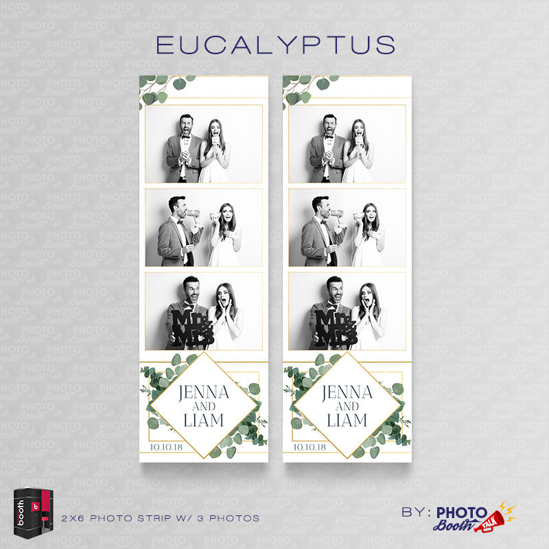 Eucalyptus 2x6 3 Images - CI Creative