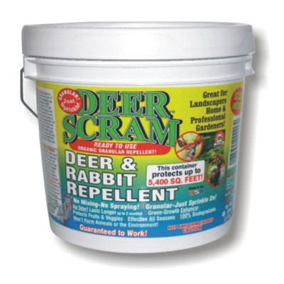 Deer Scram 6 lb Pail