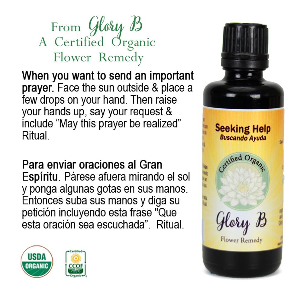 SEEKING HELP Organic Flower Essence Blend