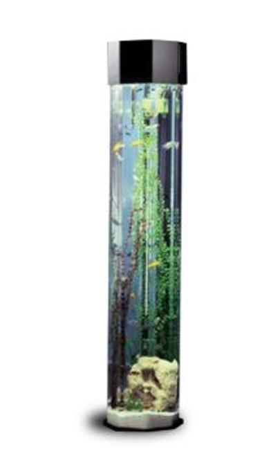690 Octagon AquaTower Aquarium