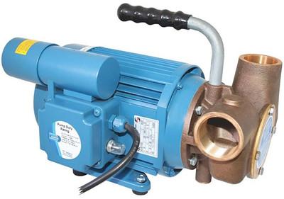 RWB Jabsco Pump Utility HD 230V AC (J40-144 Jabsco 53080-2063)