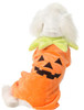 Party Pumpkin Pet Costume
