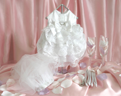 Bridal Gown With Veil & Leash