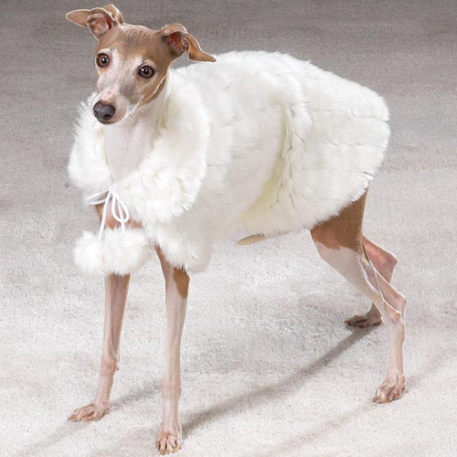 Prim Pup Faux Fur Coat