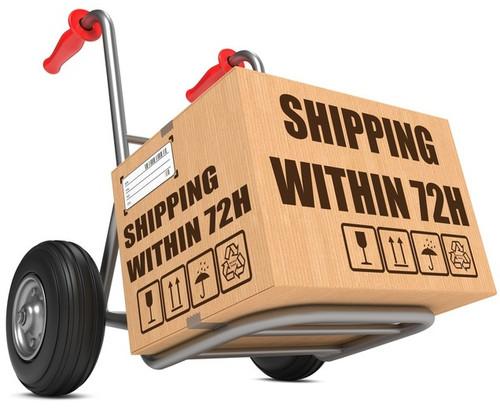 Eluktronics Three Business Day Shipping