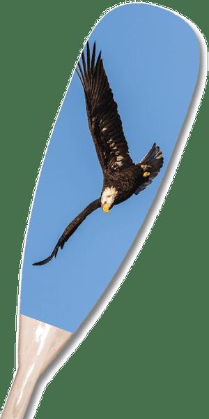 Eagle Paddle