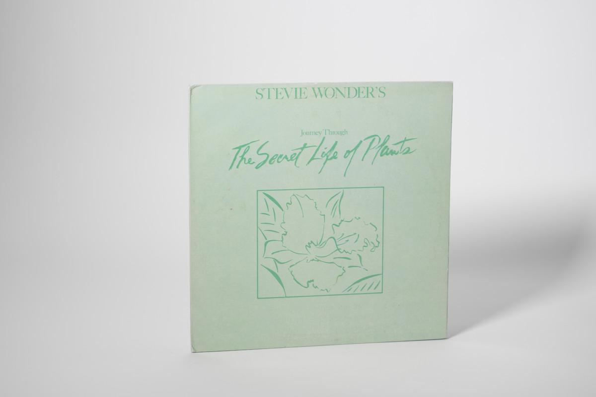 Stevie Wonder - 'Journey Through the Secret Life of Plants' Vinyl (Used)