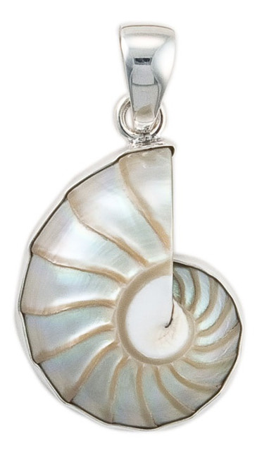 Sterling Silver Nautilus Shell Pendant