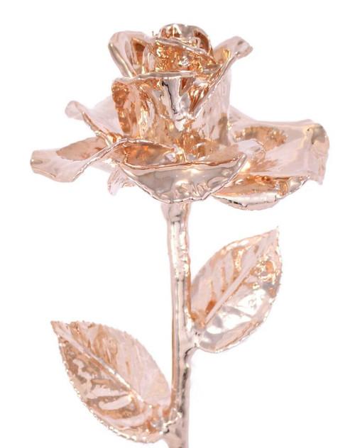 Rose Gold (Diana) Rose Trimmed in 24kt Gold LG