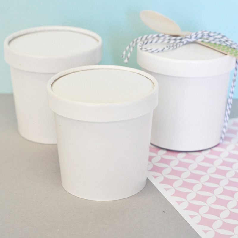 DIY Blank Mini Ice Cream Containers
