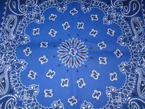 Royal Blue Paisley Badanna
