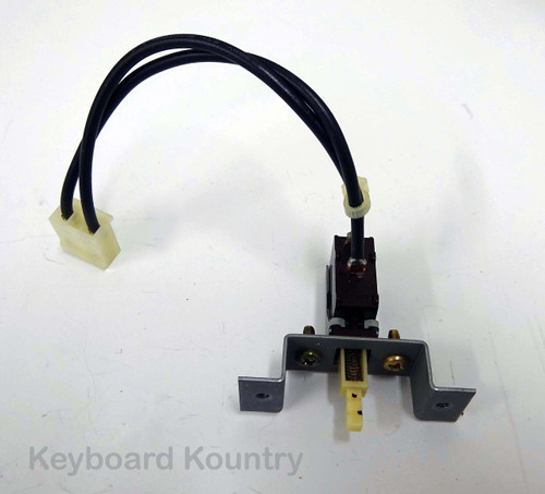 Korg T1 Power Switch Assembly