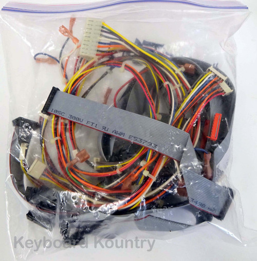 Ensoniq TS-10 Complete Wire/Cable Harness