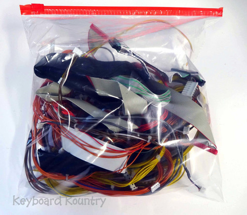 Korg TR 88 Complete Wiring Harness