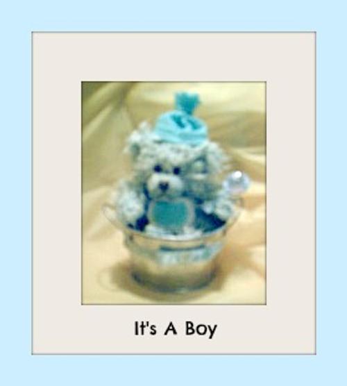Baby Boy Bear
