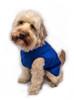 Unlined step in lightweight waterproof dog coat blue