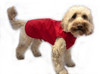 Unlined step in lightweight waterproof dog coat red