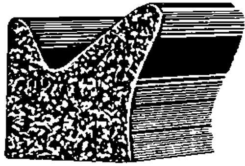 GM 1955 - On Door Flange Sponge Rubber Weatherstrip 50 Feet Per Box