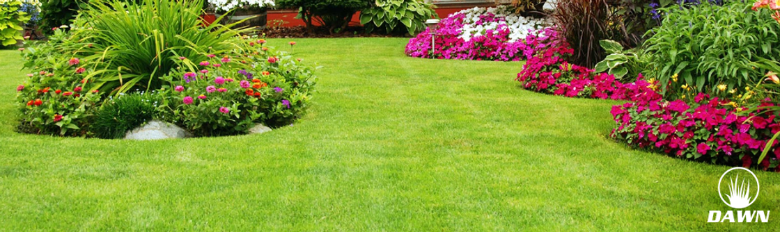 Lawn/Turf Care