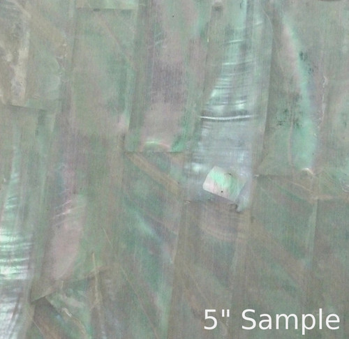 Natural Abalone Sheet 5 3/8 Inch by 9.5 Inch Greenlip Abalone
