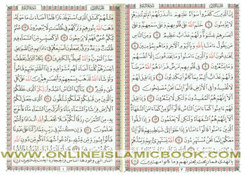 The Quran Arabic Only Uthmani Script