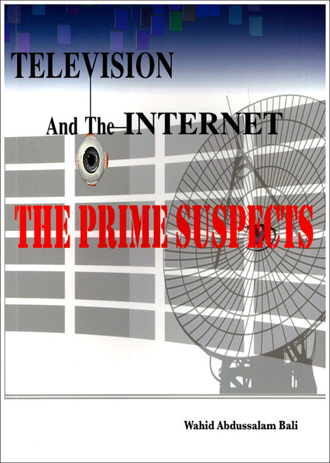 Television And The Internet The Prime Suspects