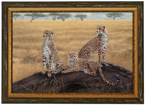 Charles Frace 'Morning Calm' Cheetah Canvas Framed L/E Signed & Numbered