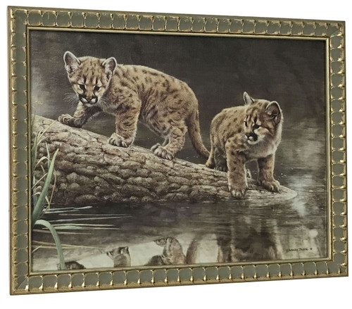 Charles Frace 'Reflections' Cougar Cubs Canvas Framed O/E
