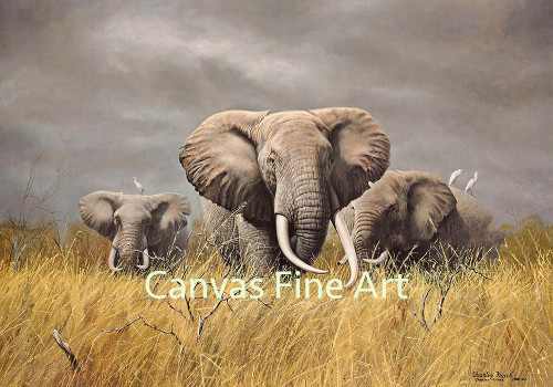 Charles Frace 'Power of the Serengeti' Elephants Canvas Edition Signed & Numbered