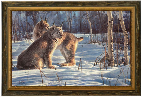 Nancy Glazier 'Lynx Light' Canvas Framed L/E Signed & Numbered