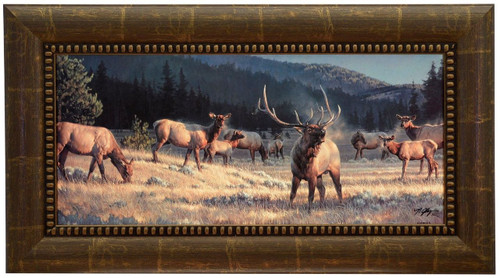 Nancy Glazier 'Rocky Mountain Meadow' Elk Canvas Framed Signed & Numbered L/E