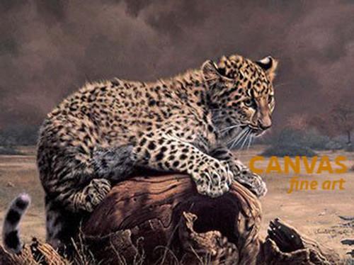 Charles Frace 'African Leopard Cub' Canvas Art 9x12 O/E