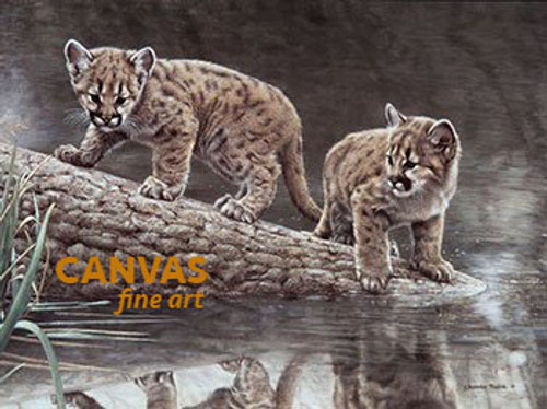 Charles Frace 'Reflections' Leopard Cubs Canvas Art 9x12 O/E