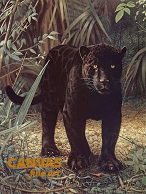 Charles Frace 'Black Jaguar' Canvas Art 9x12 O/E