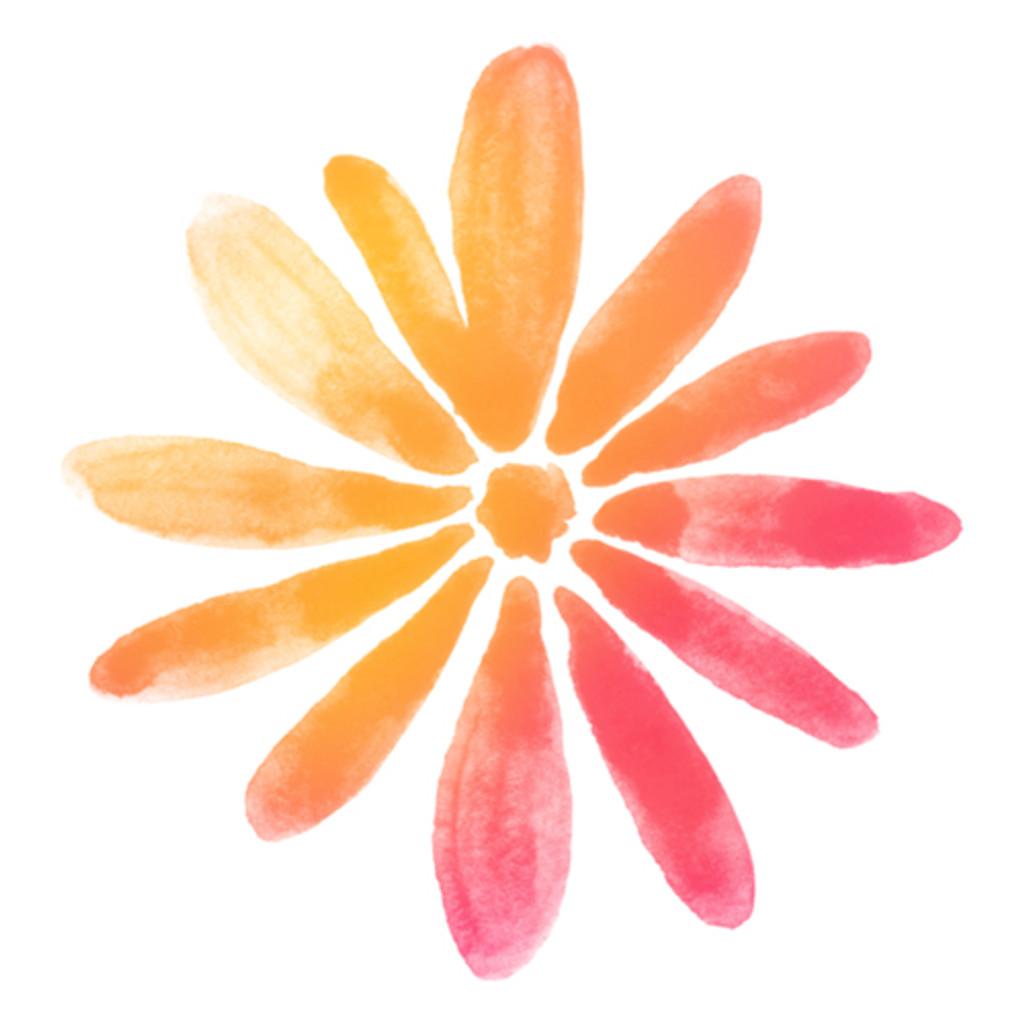 Flowers - Daisy