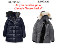 Coats for cold days under 10F without break your bank--you don't need a $1000.00 Canada Goose coat!