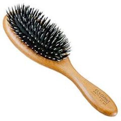 Elegant Anti Static Oval Porcupine Brush Medium