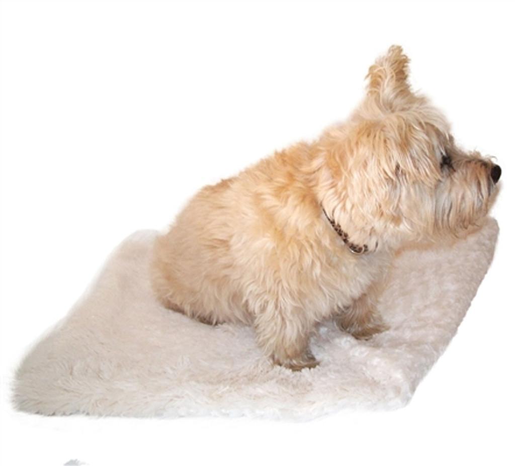 Ivory Powder Puff Minkie Binkie Blanket