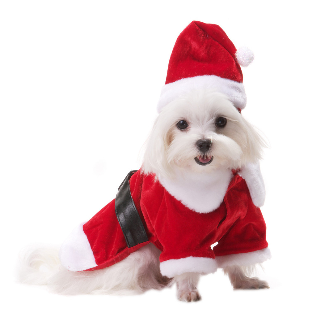 Santa Paws Outfit Christmas Holiday Dog Outfit