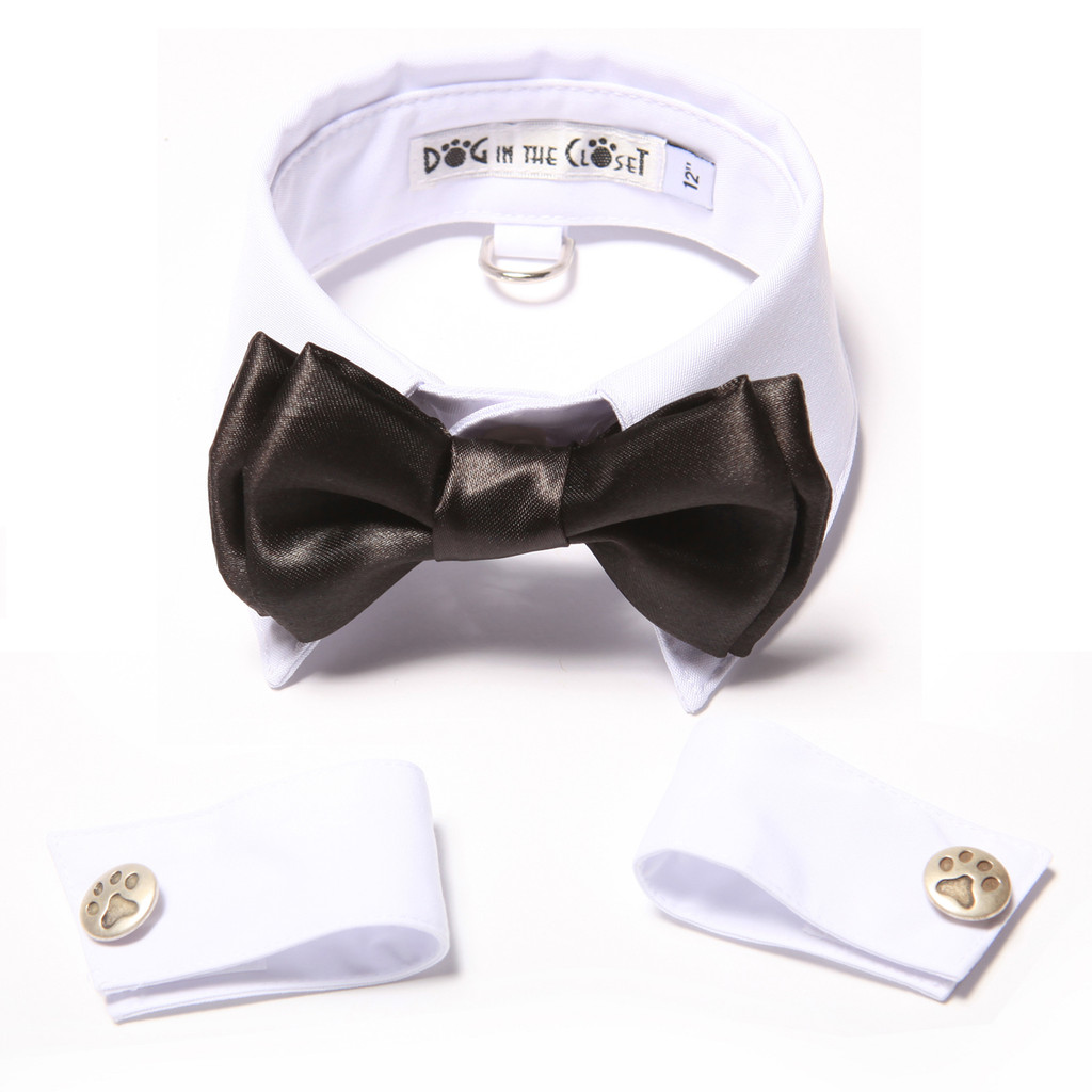 White Shirt Dog Collar with Black Bow Tie