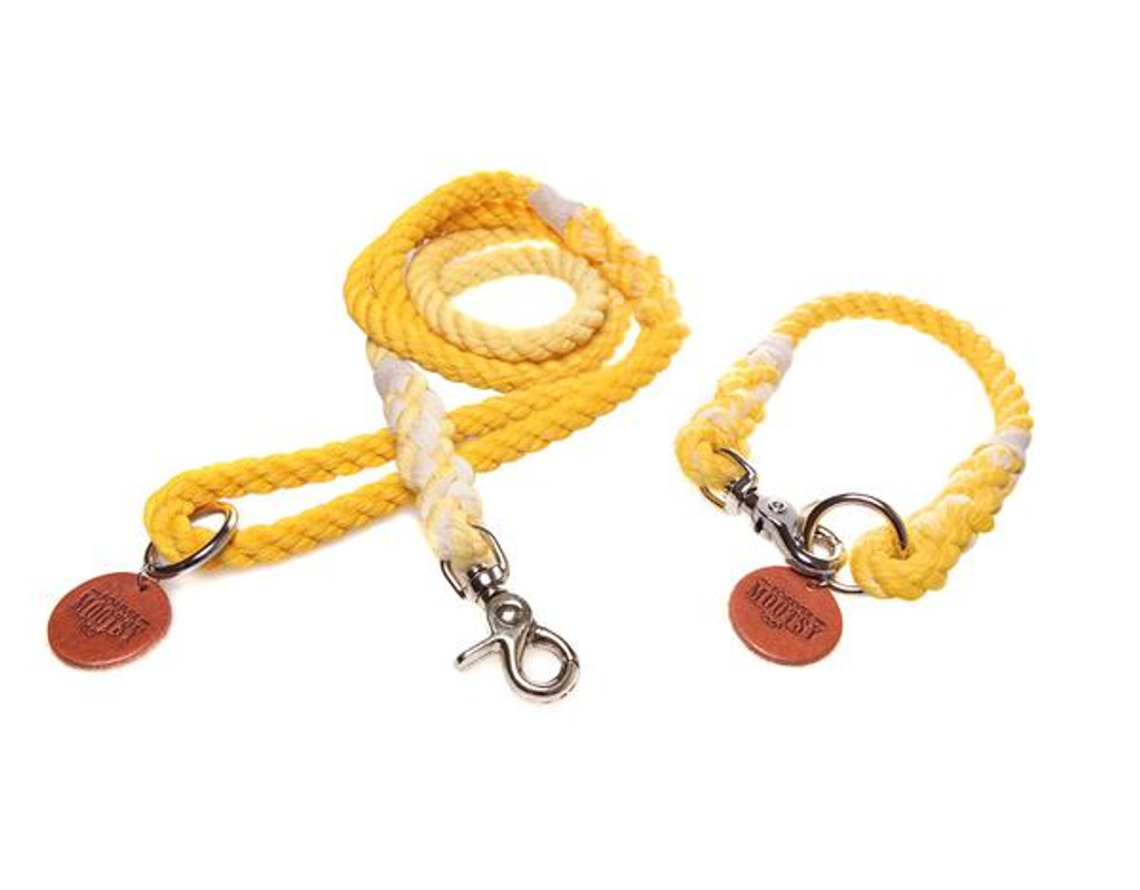 Golden Yellow Ombré Dog Collar